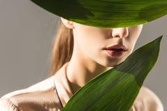 piękna dziewczyna chuje za zielonymi liśćmi zdjęcia stock