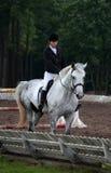 Piękna dziewczyna i szarość koń w arenie sportowa Zdjęcia Royalty Free