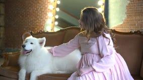 Piękna dziewczyna siedzi w krześle i muska jej dużego bielu psa zbiory