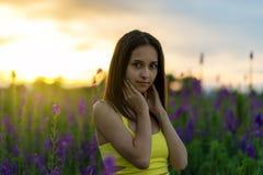 Piękna dziewczyna wśród lupine Obraz Stock