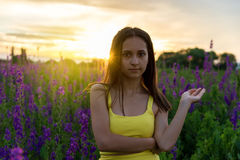 Piękna dziewczyna wśród lupine Zdjęcia Royalty Free