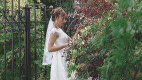 Piękna dziewczyna w biali smokingowi spacery w lato ogródzie zbiory