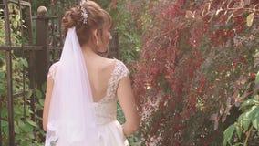 Piękna dziewczyna w biali smokingowi spacery w lato ogródzie zbiory wideo