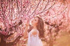 Piękna dziewczyna w brzoskwinia ogródzie obraz royalty free