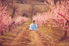 Piękna dziewczyna w brzoskwinia ogródzie zdjęcia royalty free