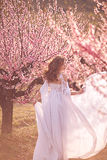 Piękna dziewczyna w brzoskwinia ogródzie obraz stock
