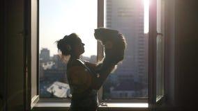 Piękna dziewczyna w hełmofonach, opowiada z puszystym kotem na jej rękach, przeciw tłu otwarte okno zdjęcie wideo