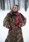 Piękna dziewczyna w parku w zimie, dziewczyna w futerkowym żakiecie Zdjęcie Stock