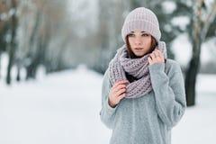 Piękna dziewczyna w zima stojakach na drodze w pulowerze w zimie i kapeluszu fotografia stock