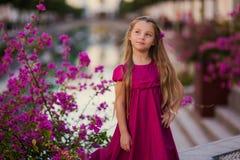 Piękna dziewczyna z długie włosy w kwitnącym ogródzie zdjęcie royalty free