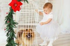 Piękna dziewczynka bawić się z szczeniakiem w wnętrzu z Ch Zdjęcie Stock