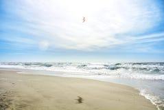 Piękna dzika unexplored raj zatoki plaża daleko od miasta z przejrzystą wodą i białym czystym piaskiem, fala przy morzem Zdjęcia Royalty Free
