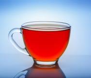 Piękna filiżanka herbata z odbiciem na błękitnym tle Zdjęcie Stock