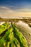 Spokojna plażowa scena z zielonymi skałami Fotografia Royalty Free