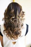 piękna fryzura ślub Fotografia Stock