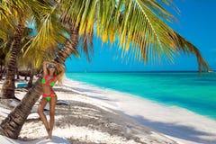 Piękna garbnikująca dziewczyna w modnych bikini stojakach obok drzewka palmowego na plaży tropikalna wyspa Wakacje letni, podr?? obrazy stock