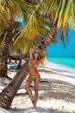 Piękna garbnikująca dziewczyna w modnych bikini stojakach obok drzewka palmowego na plaży tropikalna wyspa Wakacje letni, podr?? zdjęcia royalty free