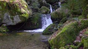 Piękna halna siklawa, czysta świeża woda płynie nad wielkimi mechatymi kamieniami w zwolnionym tempie zbiory