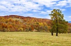 Piękna jesień Fotografia Royalty Free