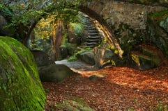 piękna jesień scena Zdjęcie Royalty Free
