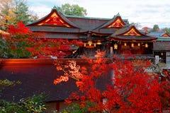 Piękna jesieni sceneria klonowi drzewa majestatycznymi tradycyjnymi Japońskimi architekturami Zdjęcia Stock