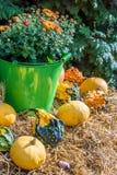Piękna jesienna dekoracja z siano belami, baniami i kwiatem, obrazy stock