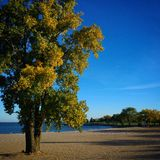 Piękna Jeziorna Erie i Cleveland Ohio plaża Zdjęcia Stock
