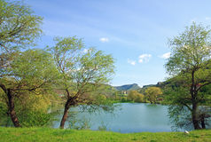 piękna jeziorna wiosna Zdjęcia Stock