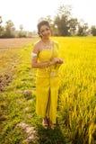 Piękna Kambodżańska Azjatycka panna młoda w Tradycyjnej Ślubnej sukni w Ryżowym polu Fotografia Stock
