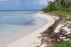 Piękna karaibska brzegowa republika dominikańska fotografia stock
