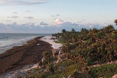 Piękna karaibska piasek plaża blisko ruin Tulum, Mexico Zdjęcia Stock