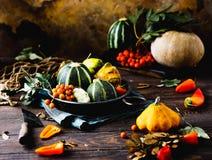 Piękna karmowa fotografia z bardzo pięknymi jaskrawymi warzywami! Zdjęcia Stock