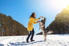 Piękna kobieta chodzi w zimy śnieżystym drewnie Obraz Stock