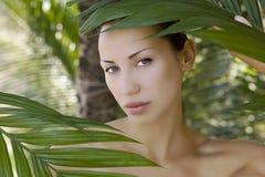 Piękna kobieta chuje za palmowymi liśćmi Zdjęcia Royalty Free