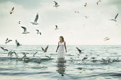 Piękna kobieta i seaguls na plaży Obraz Stock