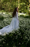 Piękna kobieta jest ubranym długą biel suknię w lesie Obraz Stock