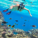 Piękna kobieta snorkeling w Czerwonym morzu Obraz Stock