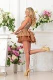 Piękna kobieta w brąz sukni w luksusowym wnętrzu. obraz stock