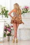 Piękna kobieta w brąz sukni w luksusowym wnętrzu. zdjęcia royalty free