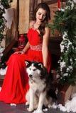 Piękna kobieta w czerwonym wieczór sukni obsiadaniu na krokach z jej psem, husky na tle boże narodzenia dekorowali pokój fotografia stock
