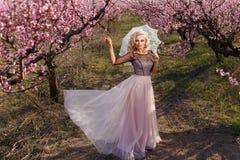 Piękna kobieta w długiej sukni w ogródzie kwitnące brzoskwinie, obraz stock