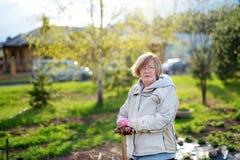 Piękna kobieta w ogródzie, pracuje utrzymywać jej miastowego jedzenie ogród Zdjęcie Stock