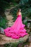 Piękna kobieta w wspaniałej sukni Obraz Royalty Free