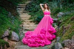 Piękna kobieta w wspaniałej sukni Obraz Stock