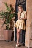 Piękna kobieta z długim blondynka włosy smilling Fotografia Royalty Free