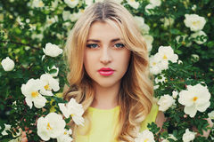 Piękna kobieta z długim kędzierzawym włosy wącha białe róże outdoors, zbliżenie portret zmysłowa dziewczyny twarz Fotografia Royalty Free