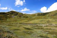 piękna krajobrazowa północna norweska dolina obrazy royalty free