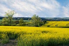 piękna krajobrazowa wiejska wiosna Zdjęcia Royalty Free