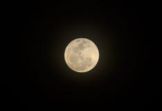 Piękna księżyc Fotografia Stock