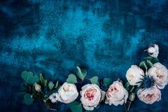Piękna kwiat rama z różami na błękitnym tle Fotografia Stock